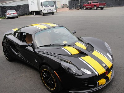 Lotus Vehicle Striping - McClean Vehicle Graphics